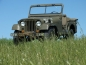 Willys M38A1 MD US Army C15